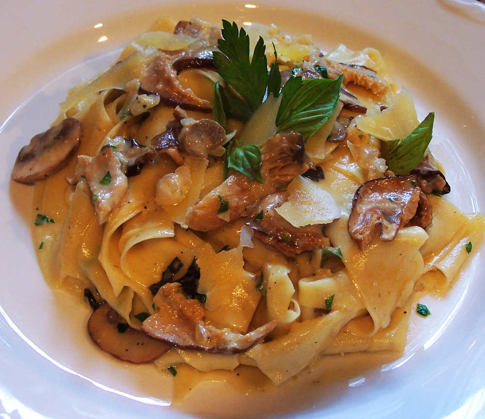 Handmade Pappardelle with Creamy Mushroom Sauce
