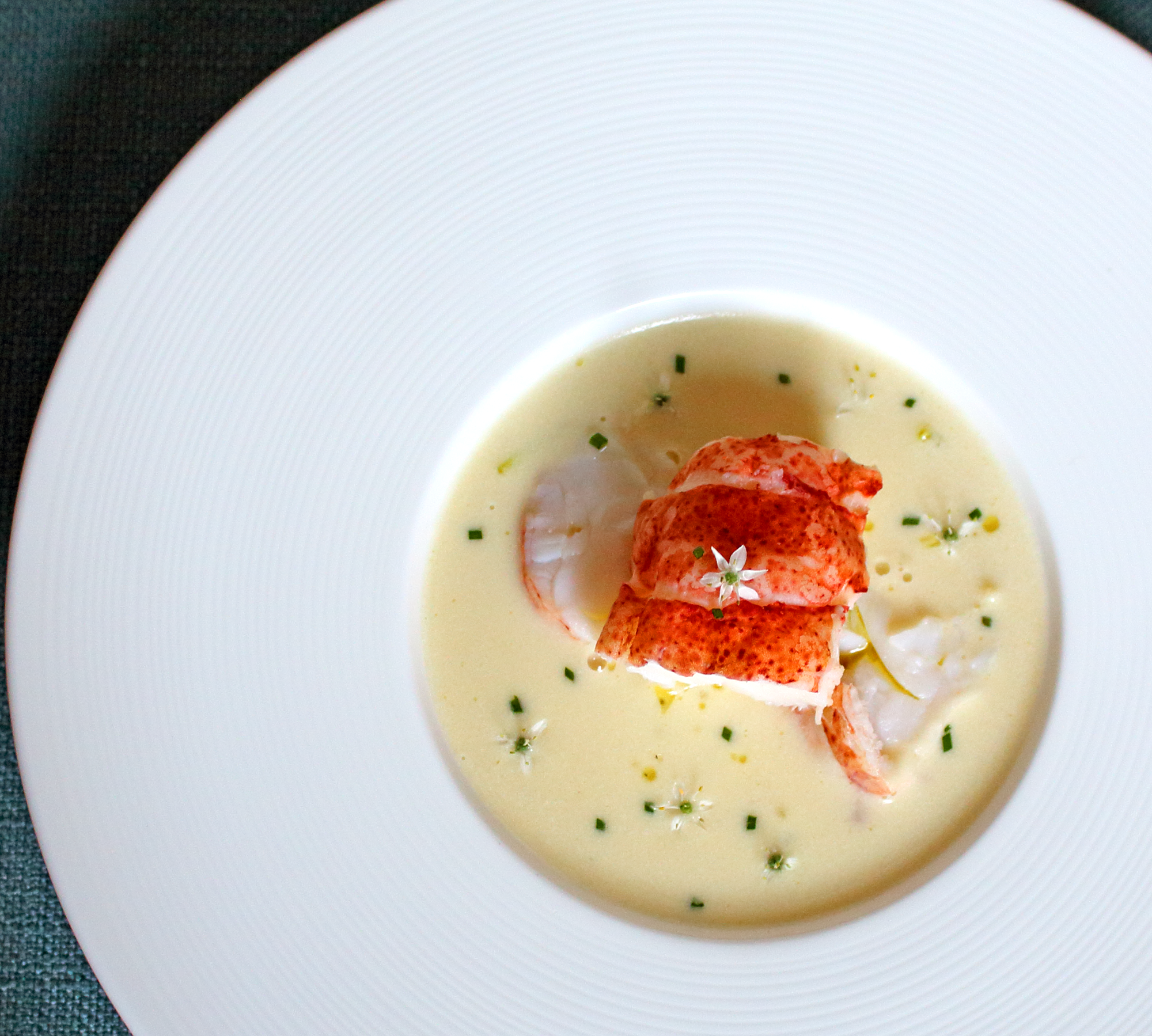 Cauliflower Vichyssoise with Lobster